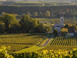 Vignoble Loupiac - Vins blancs liquoreux bordelais