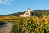 Alsace-photo-region-Fotolia-.jpg
