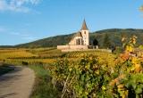 Alsace-photo-region-Fotolia-.jpg