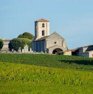 libournais-saint-emilion-vignoble-sous-region-bordelais.jpg